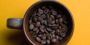 Farmacología del café